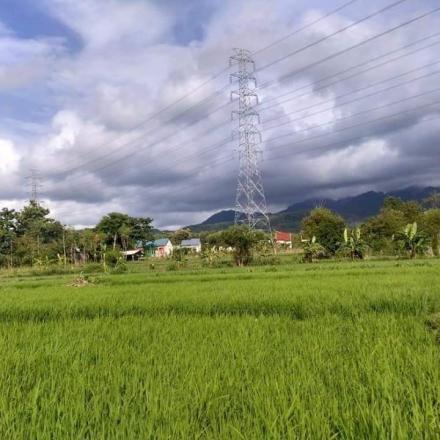 Asal-usul Desa Sriombo dan Situs Sejarahnya